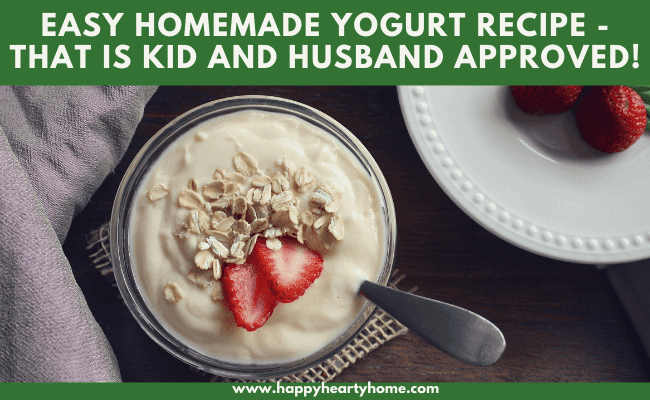 Easy Homemade Yogurt Recipe - Homemade yogurt in a bowl with strawberries and oatmeal.
