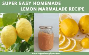 Easy Homemade Lemon Marmalade Recipe