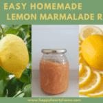 Super Easy Homemade Lemon Marmalade Recipe - With HONEY Instead Of SUGAR