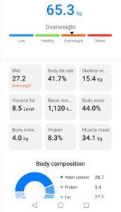 health app overweight result