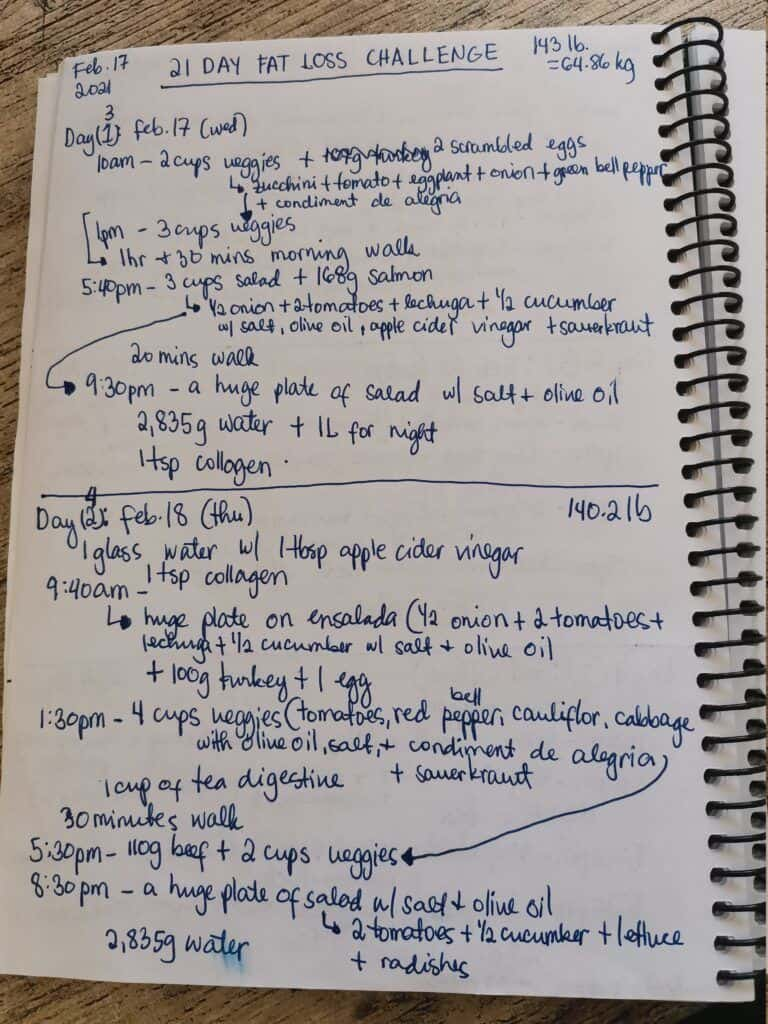 First page of a food journal for weight loss journey at home.