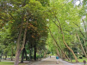 visiting san francisco park, one of the things to do on a one day tour in oviedo,asturias with small kids.